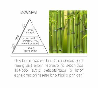 Acqua Aroma Bamboo Room Fragrance OZ New