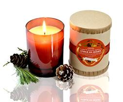 PURE PLANT HOME Peace On Earth 9 oz Candle~ Fill your home w