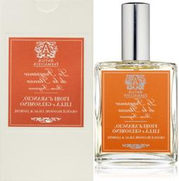Room Spray ORANGE Blossom Lilac & Jasmine 3.4 Fl.Oz. BEAUTY