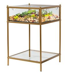 Terrarium Display End Table with Reinforced Glass in Gold Ir